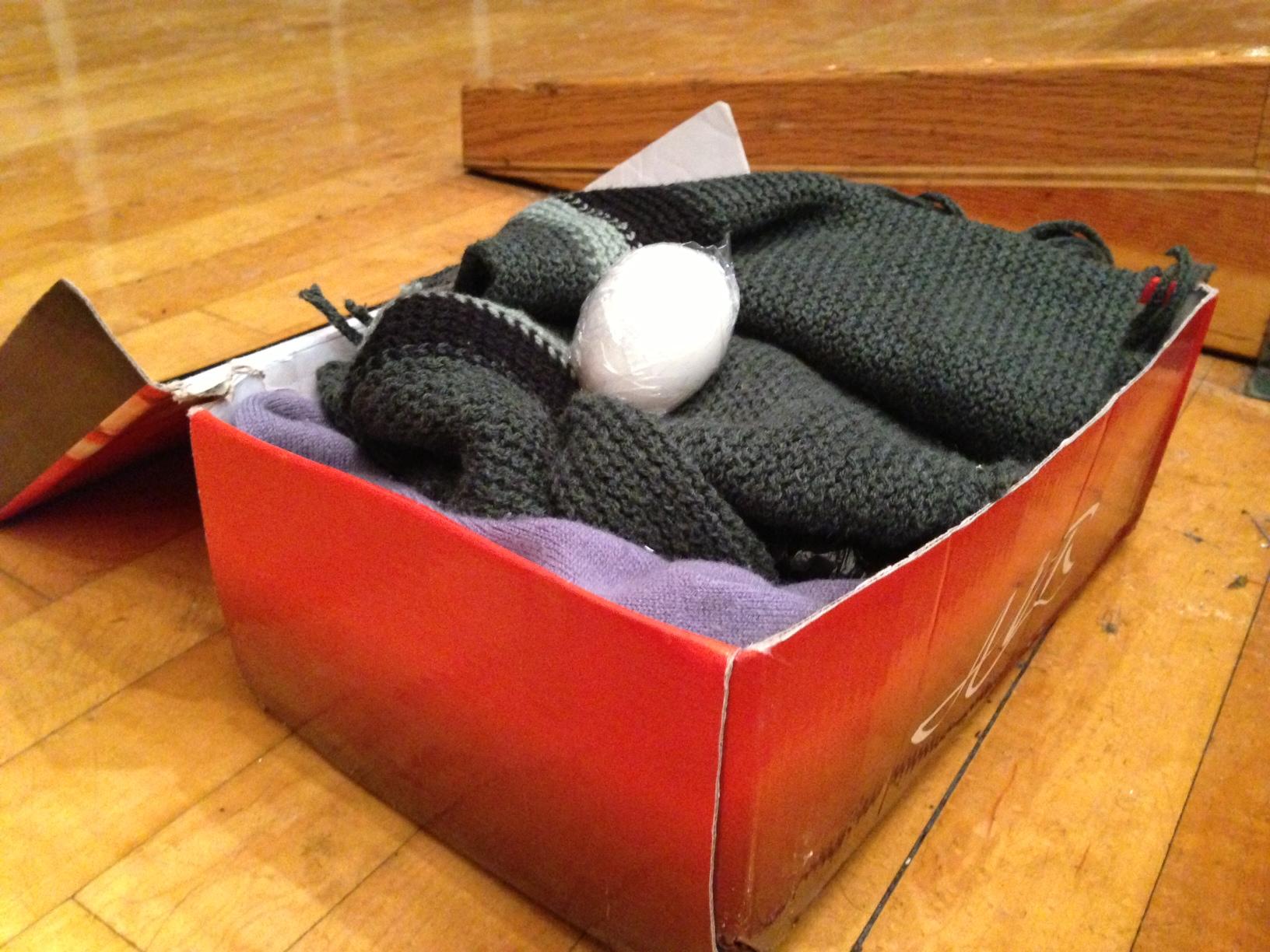 egg drop project in a box wwwpixsharkcom images